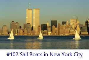 Sail Boats in New York City Screen Image