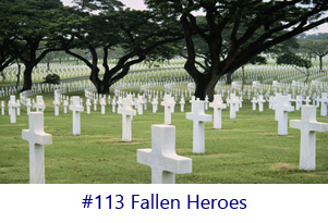 Fallen Heroes Screen Image