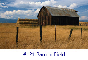 Barn in Field Screen Image