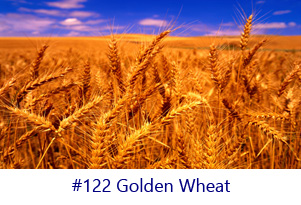 Golden Wheat Screen Image