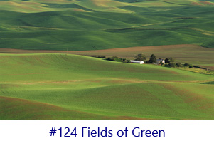 Fields of Green Screen Image