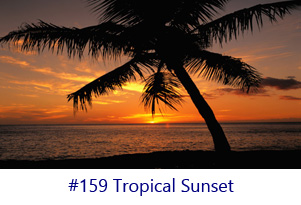 Tropical Sunset Screen Image