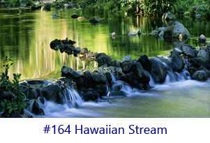 Hawaiian Stream Screen Image