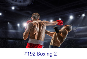 Boxing 2 Screen Image