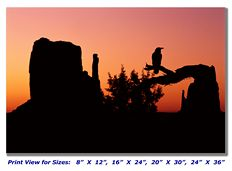 Raven at Monument Valley on Canvas
