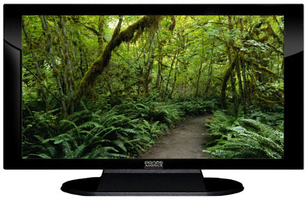 "52"" TV Prop Plasma-LED Flat Screen TV in Gloss Black on Matte Black-XX Style Series with Forest Trail Screen"